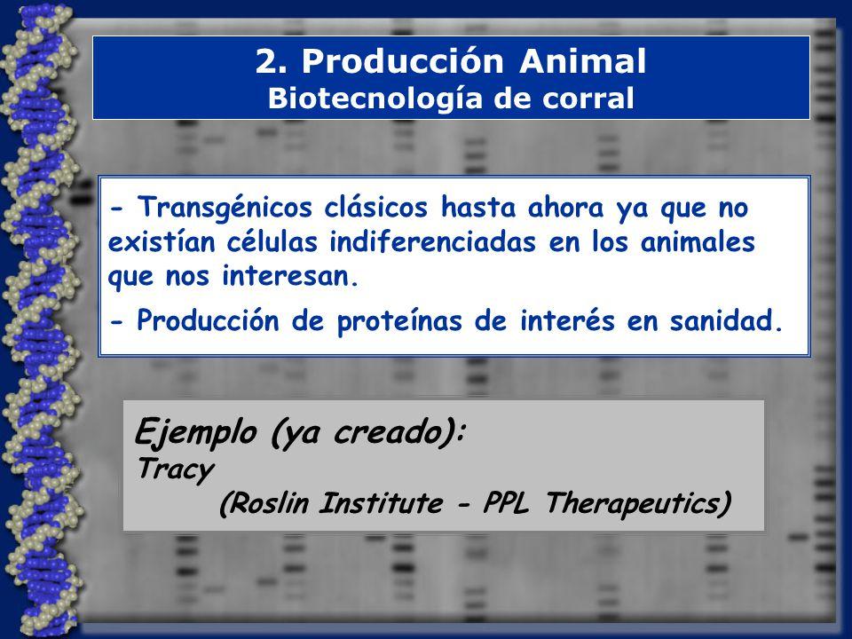 Biotecnología de corral
