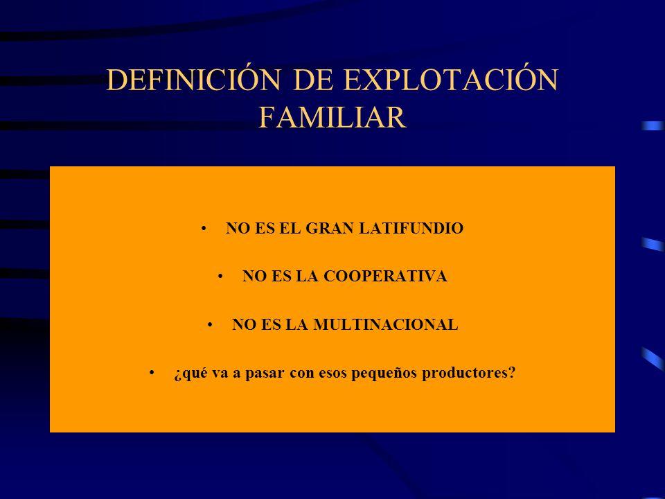 DEFINICIÓN DE EXPLOTACIÓN FAMILIAR