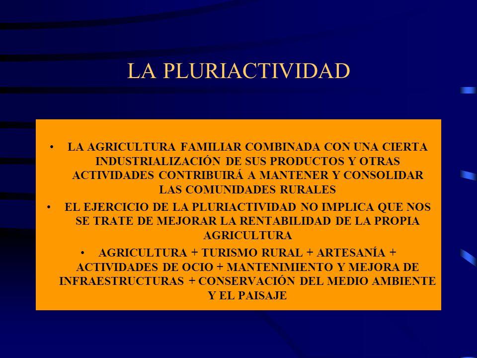 LA PLURIACTIVIDAD