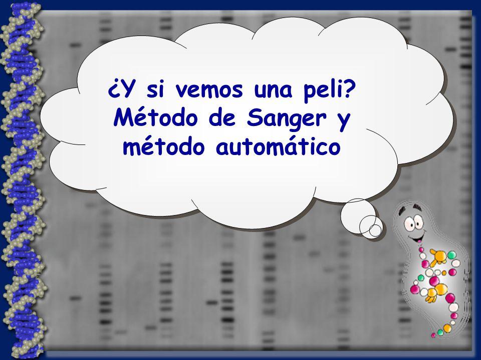 Método de Sanger y método automático