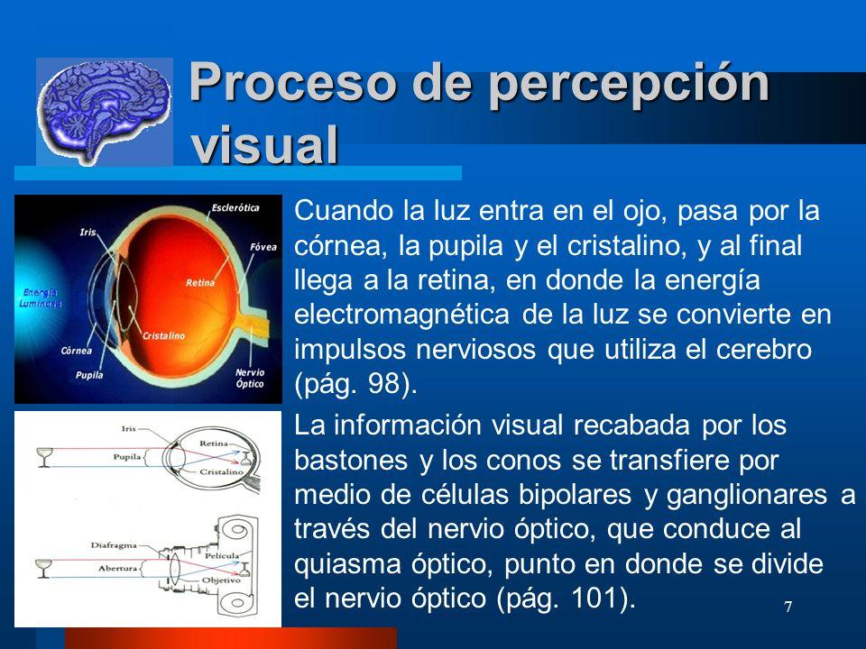 Proceso de percepción visual