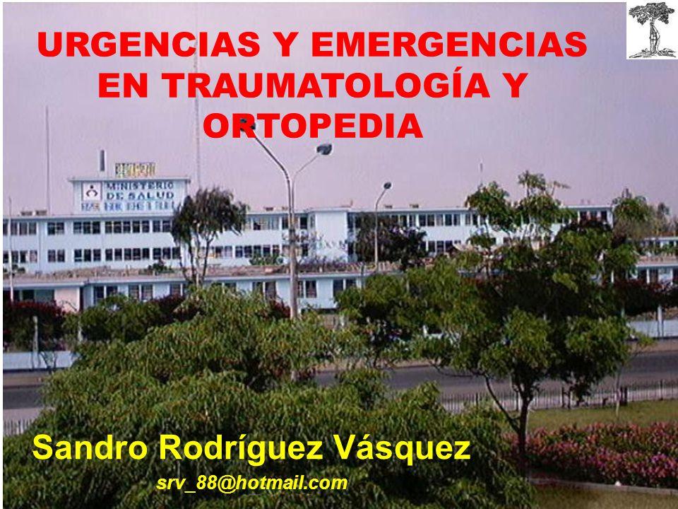 Sandro Rodríguez Vásquez srv_88@hotmail.com