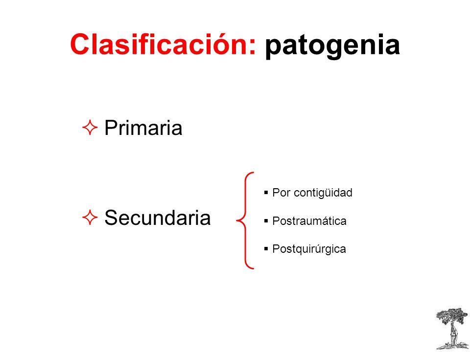 Clasificación: patogenia