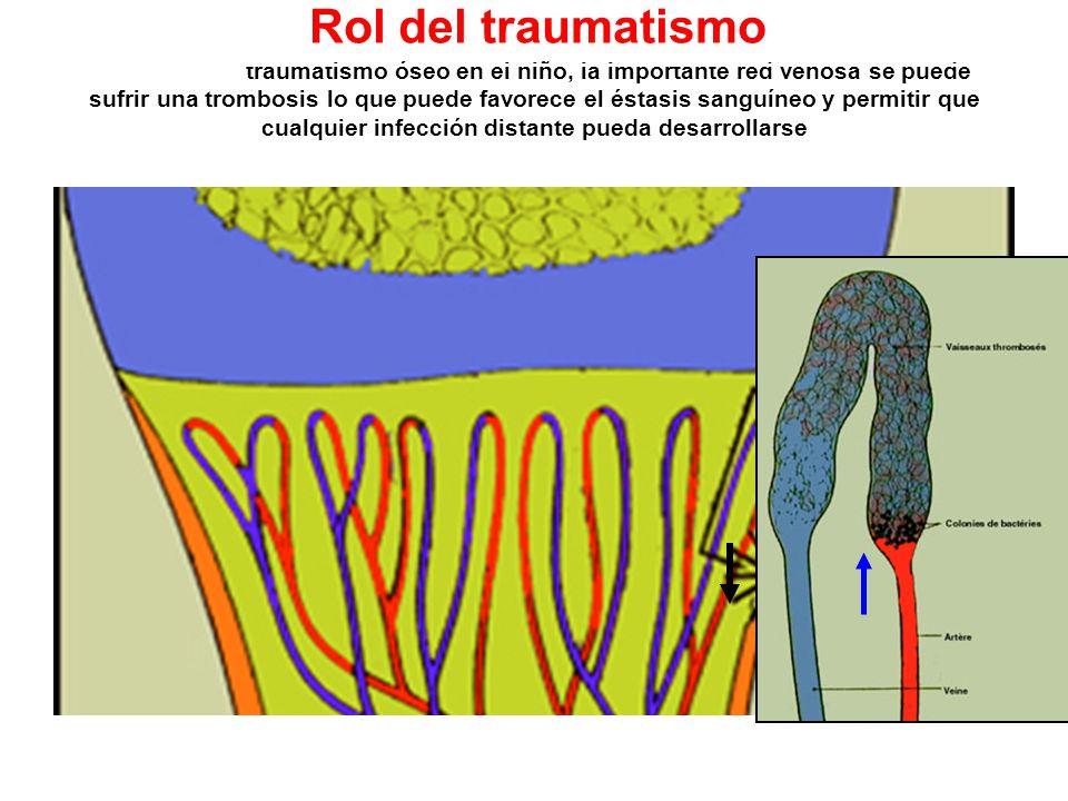 Rol del traumatismo