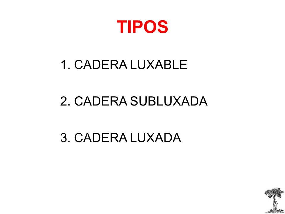 TIPOS 1. CADERA LUXABLE 2. CADERA SUBLUXADA 3. CADERA LUXADA