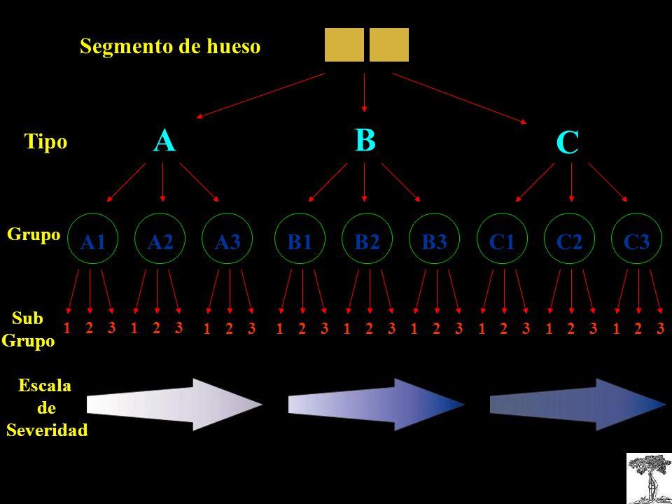 A B C Segmento de hueso Tipo A1 A2 A3 B3 B1 B2 C1 C3 C2 Grupo Sub