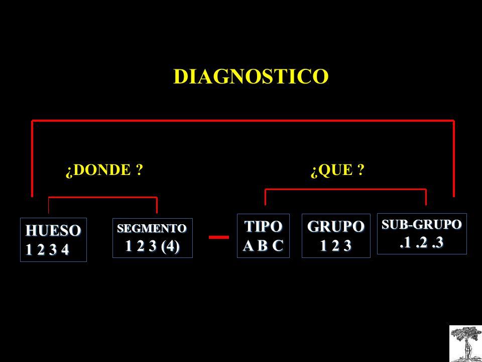 DIAGNOSTICO ¿DONDE ¿QUE TIPO A B C GRUPO 1 2 3 .1 .2 .3 HUESO