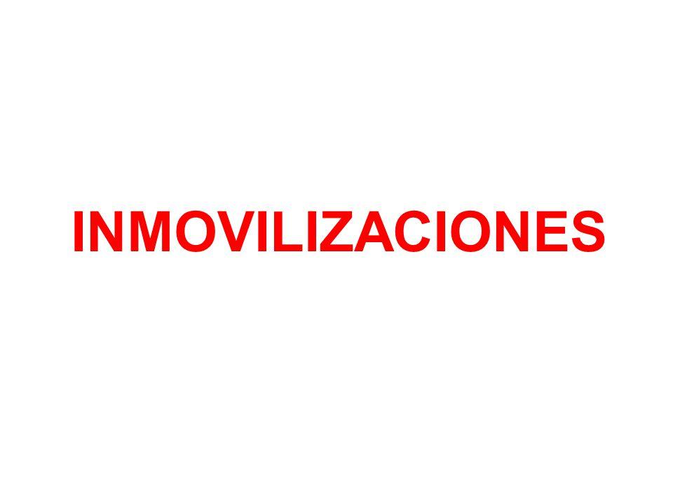INMOVILIZACIONES