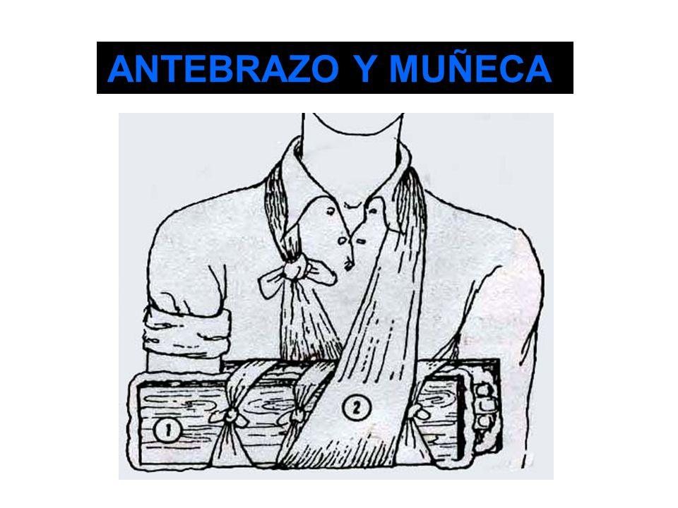 ANTEBRAZO Y MUÑECA