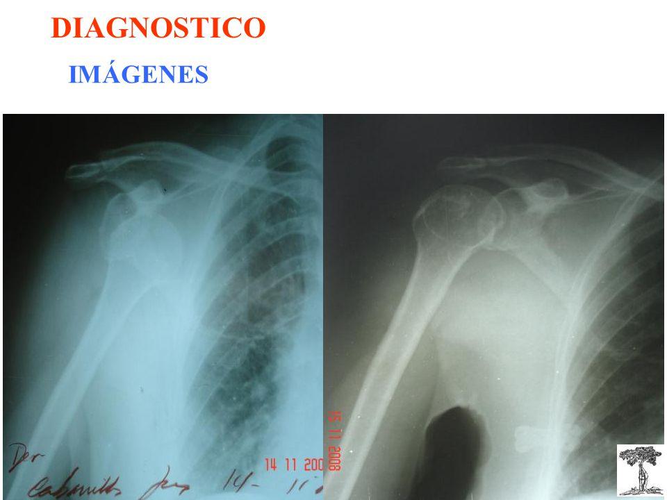 DIAGNOSTICO IMÁGENES