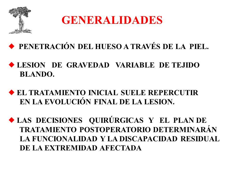 GENERALIDADES  PENETRACIÓN DEL HUESO A TRAVÉS DE LA PIEL.