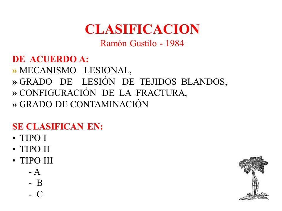 CLASIFICACION Ramón Gustilo - 1984 DE ACUERDO A: » MECANISMO LESIONAL,