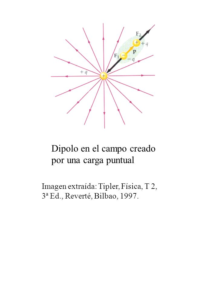 Dipolo en el campo creado por una carga puntual