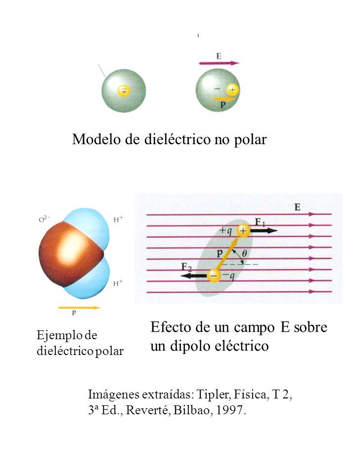Modelo de dieléctrico no polar