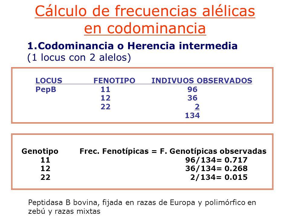 Genotipo Frec. Fenotípicas = F. Genotípicas observadas