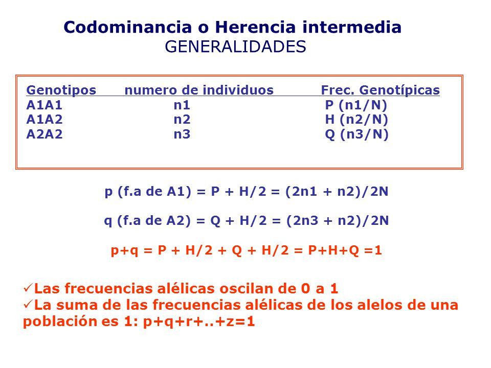 Codominancia o Herencia intermedia GENERALIDADES