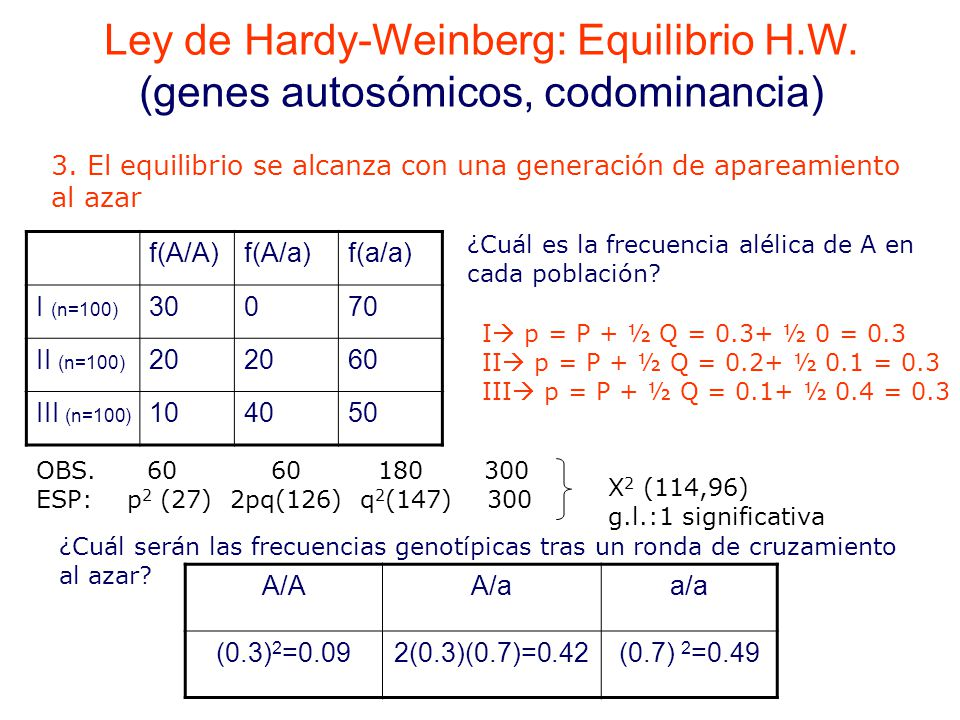 Ley de Hardy-Weinberg: Equilibrio H. W