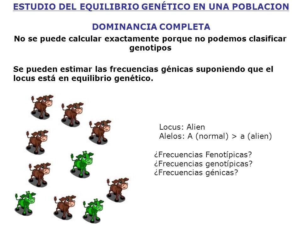 ESTUDIO DEL EQUILIBRIO GENÉTICO EN UNA POBLACION