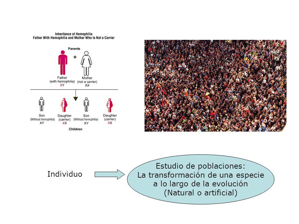 Estudio de poblaciones: La transformación de una especie