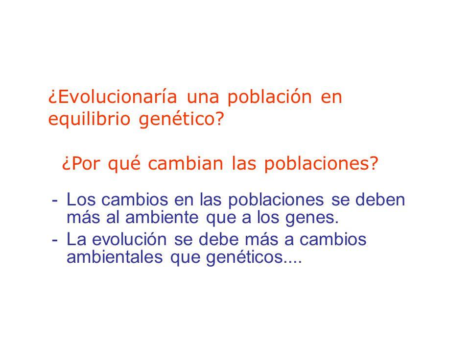 ¿Evolucionaría una población en equilibrio genético