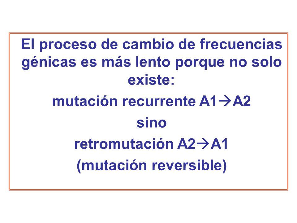mutación recurrente A1A2