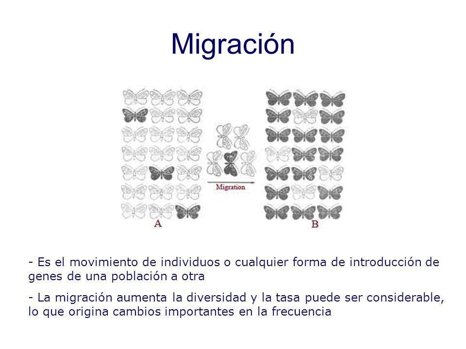Migración En plantas la migración la podrían producir los insectos que llevarán polen de una población a otra.