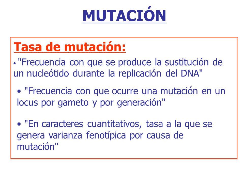 MUTACIÓN Tasa de mutación:
