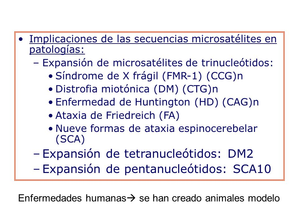 Expansión de tetranucleótidos: DM2