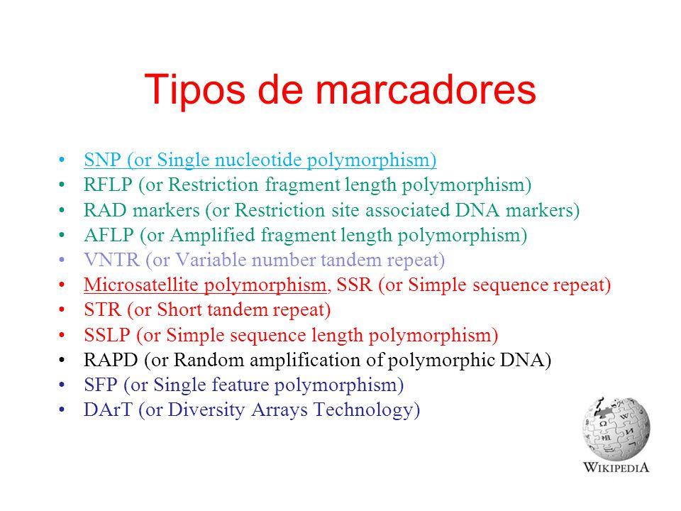Tipos de marcadores SNP (or Single nucleotide polymorphism)
