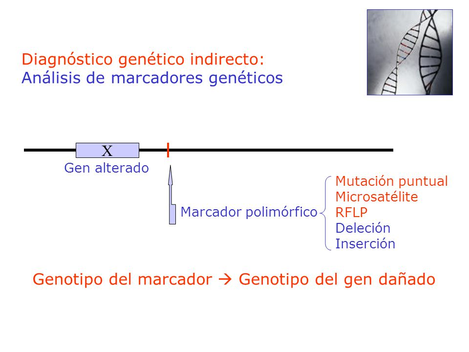 Diagnóstico genético indirecto: Análisis de marcadores genéticos