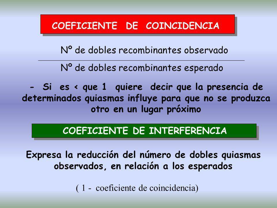 COEFICIENTE DE COINCIDENCIA