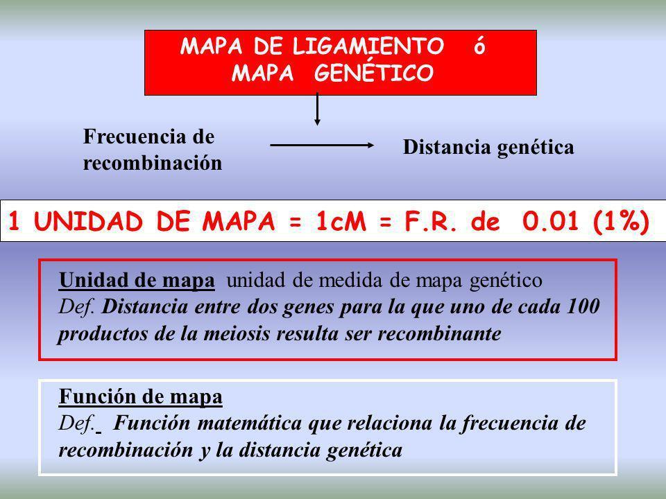 1 UNIDAD DE MAPA = 1cM = F.R. de 0.01 (1%)