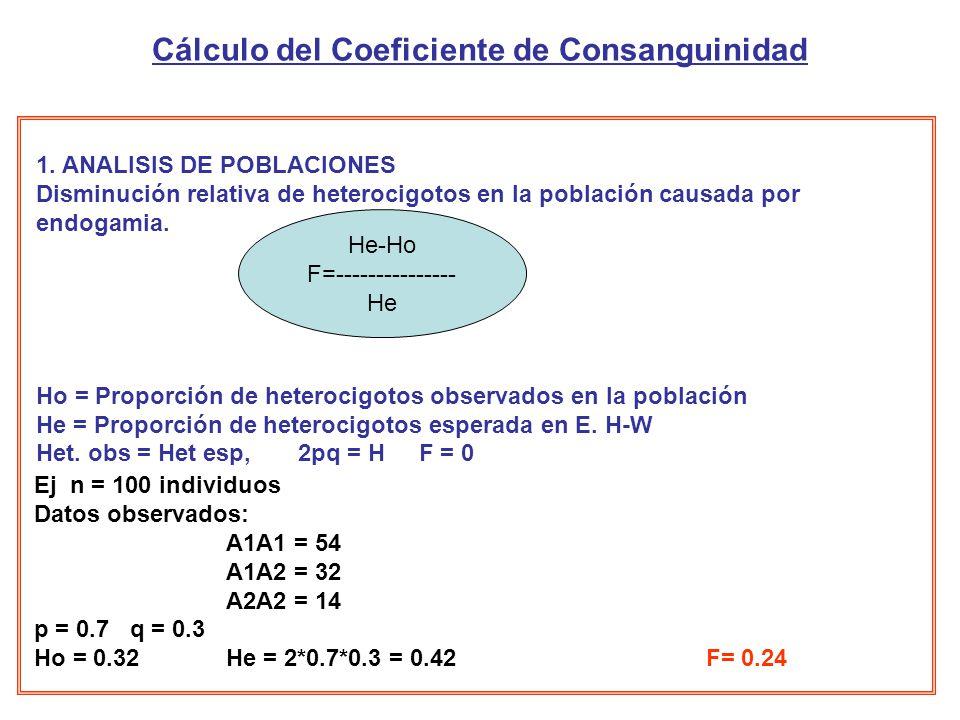Cálculo del Coeficiente de Consanguinidad