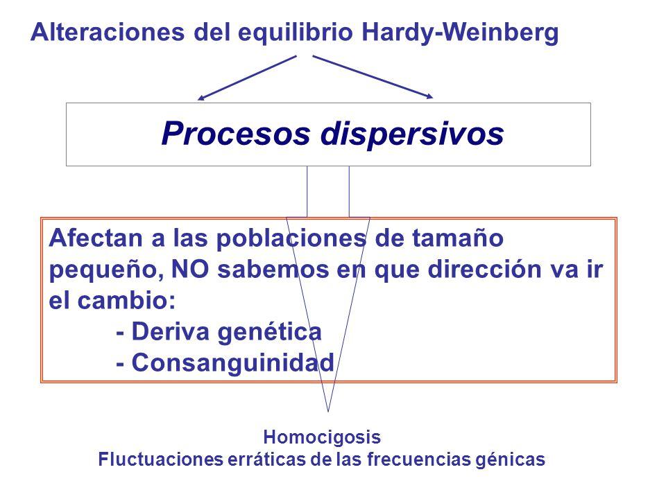 Fluctuaciones erráticas de las frecuencias génicas