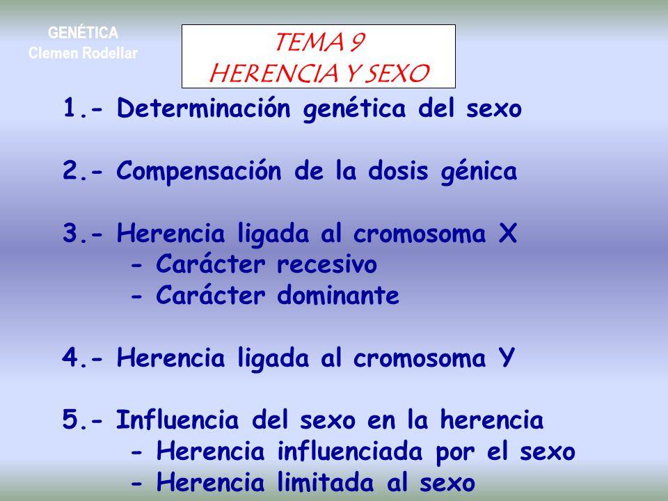 1.- Determinación genética del sexo
