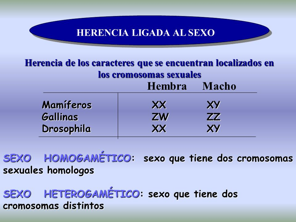 Hembra Macho HERENCIA LIGADA AL SEXO