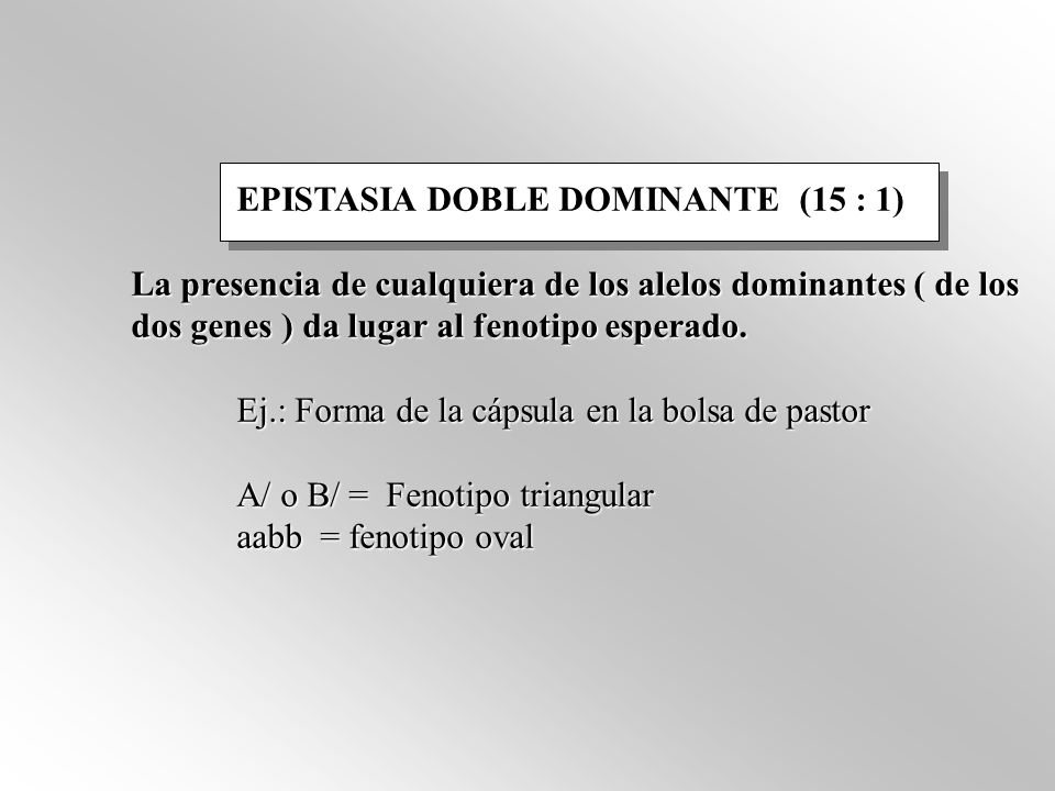 EPISTASIA DOBLE DOMINANTE (15 : 1)