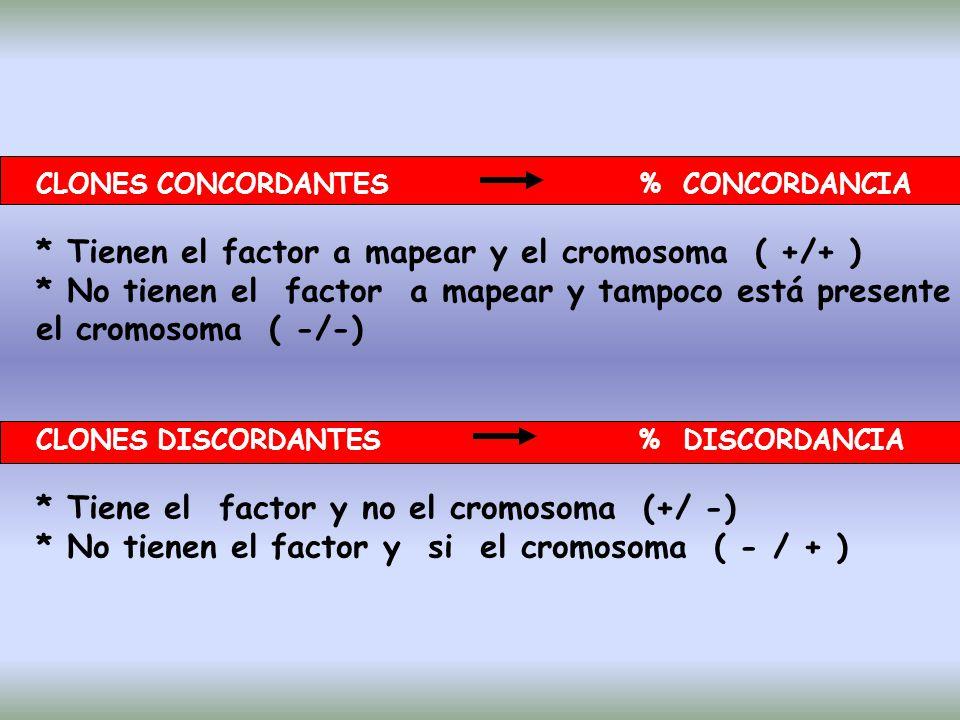 * Tienen el factor a mapear y el cromosoma ( +/+ )