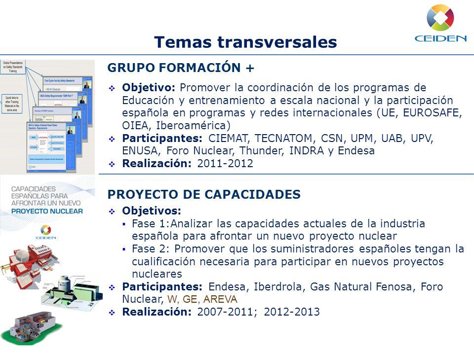 Temas transversales GRUPO FORMACIÓN + PROYECTO DE CAPACIDADES