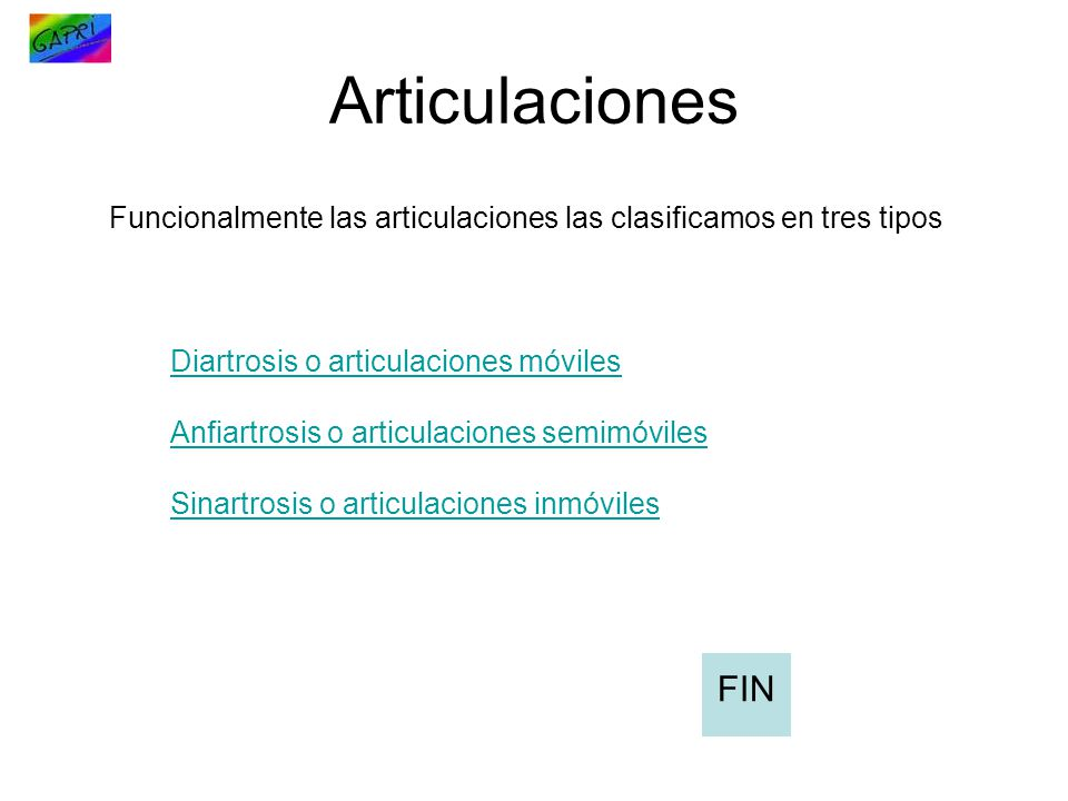 Articulaciones Funcionalmente las articulaciones las clasificamos en tres tipos. Diartrosis o articulaciones móviles.