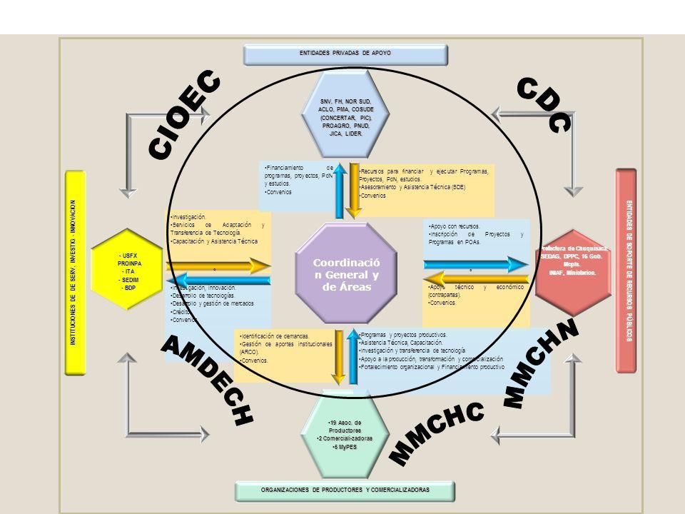 CDC CIOEC MMCHN AMDECH MMCHC Coordinación General y de Áreas