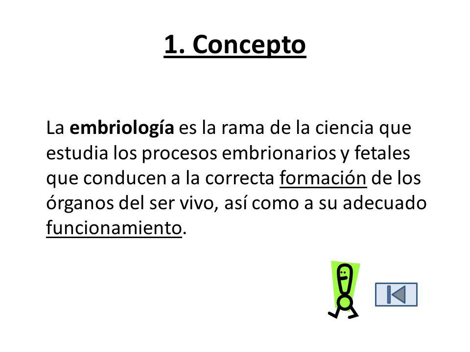1. Concepto