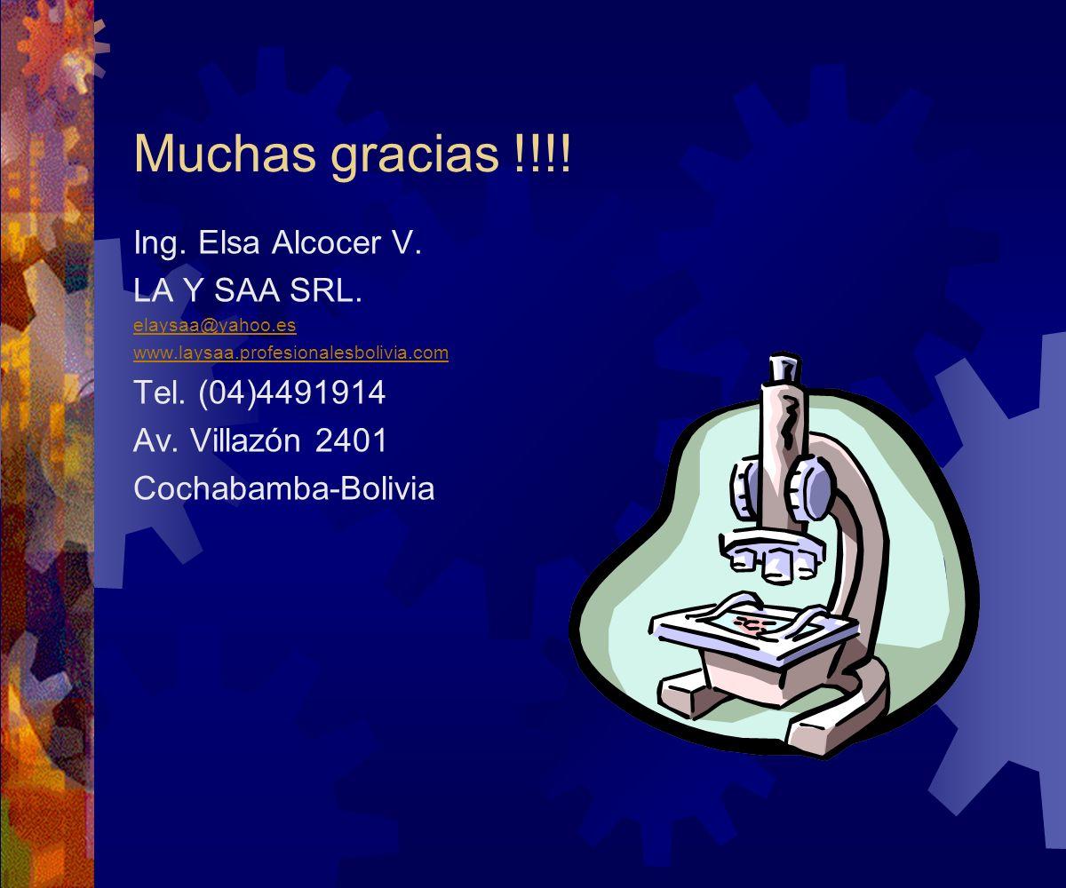 Muchas gracias !!!! Ing. Elsa Alcocer V. LA Y SAA SRL.