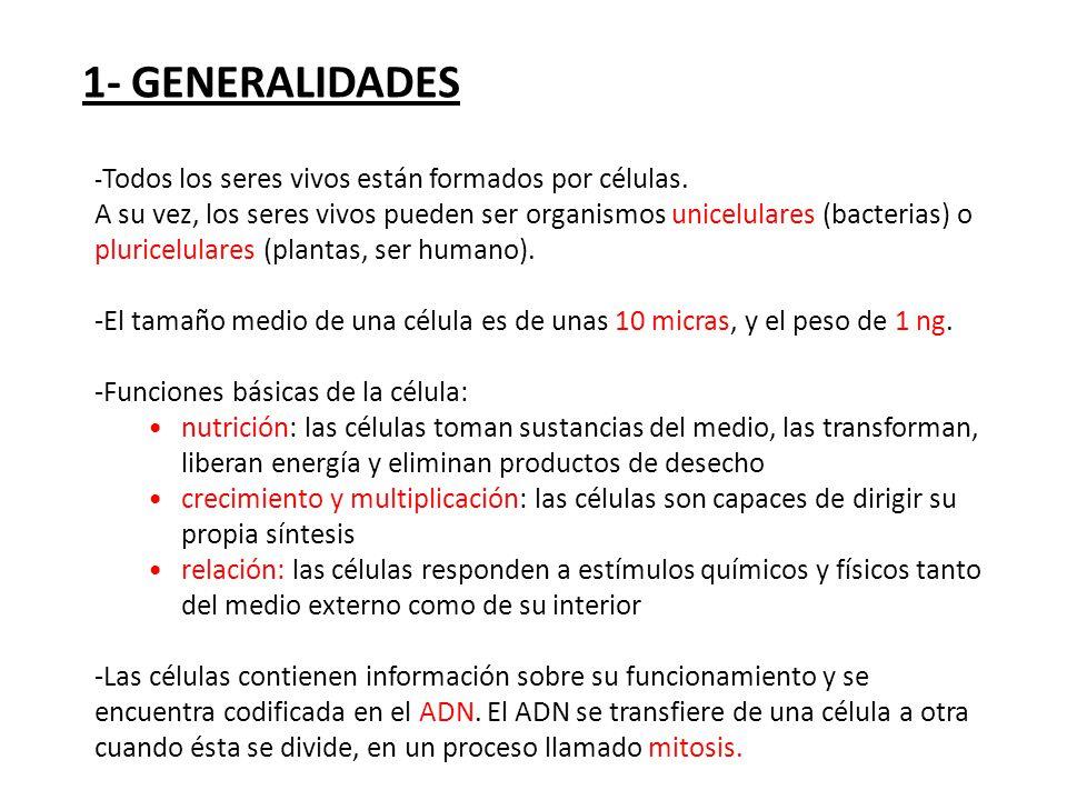 1- GENERALIDADES -Todos los seres vivos están formados por células.
