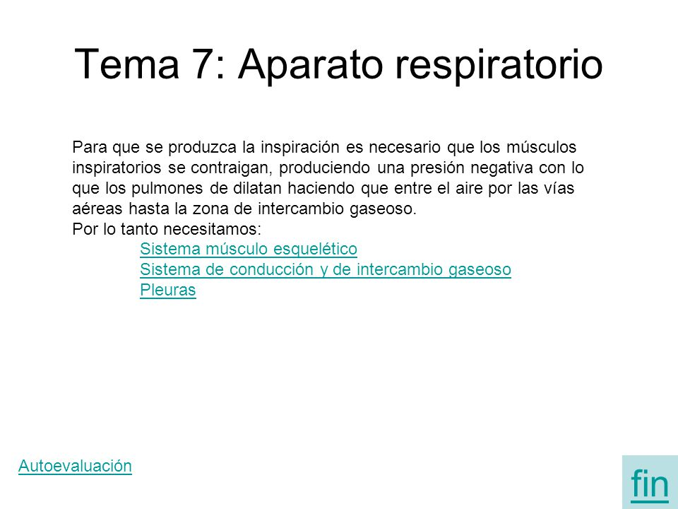 Tema 7: Aparato respiratorio