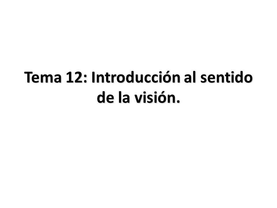 Tema 12: Introducción al sentido de la visión.