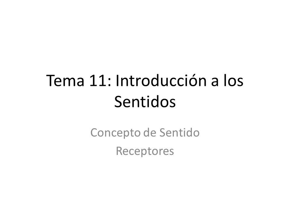 Tema 11: Introducción a los Sentidos