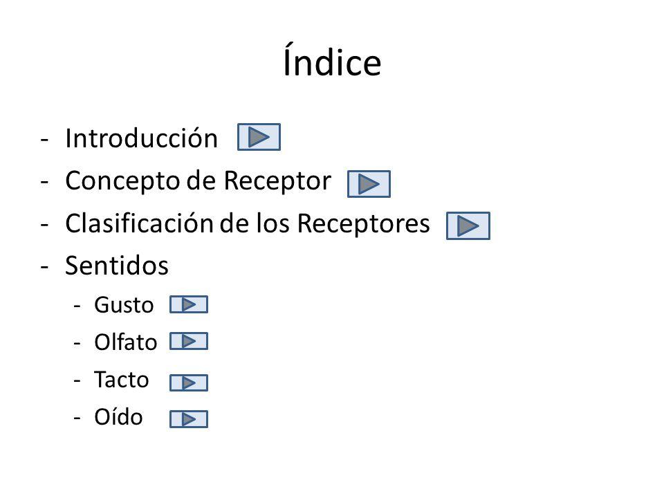 Índice Introducción Concepto de Receptor