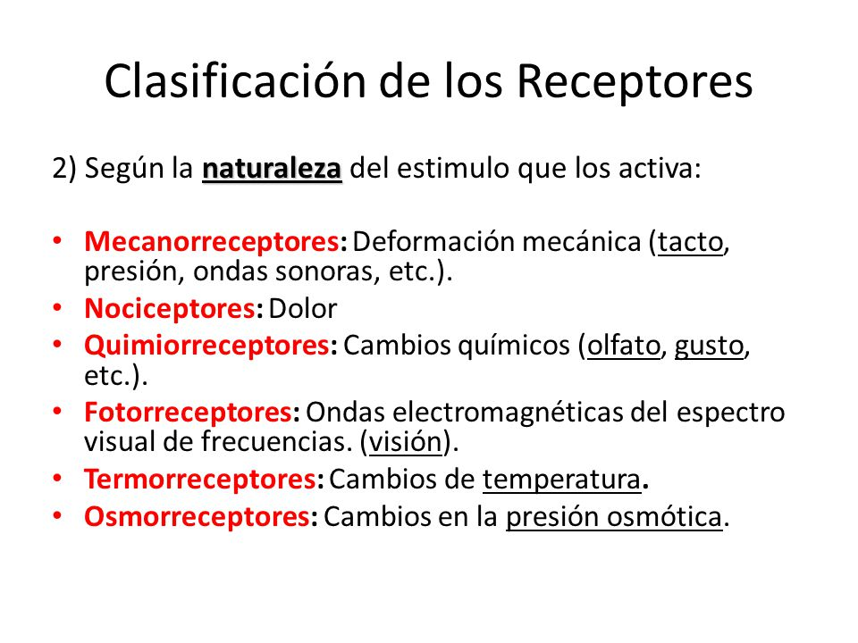 Clasificación de los Receptores