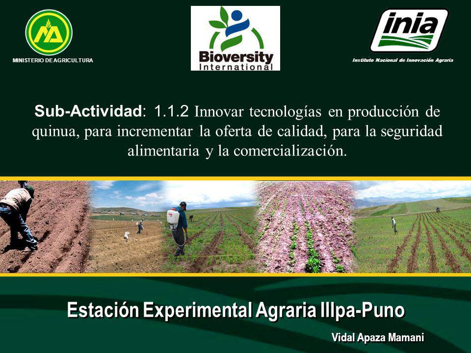 Estación Experimental Agraria Illpa-Puno